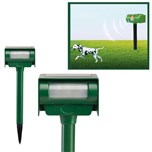 Solar Animal Repeller - Repousse Nuisibles Solaire