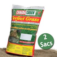 Perfect Grass - Lot de 2x1kg