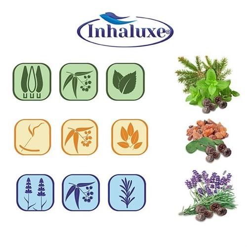 Inhaluxe X2